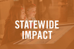 state-wide impact