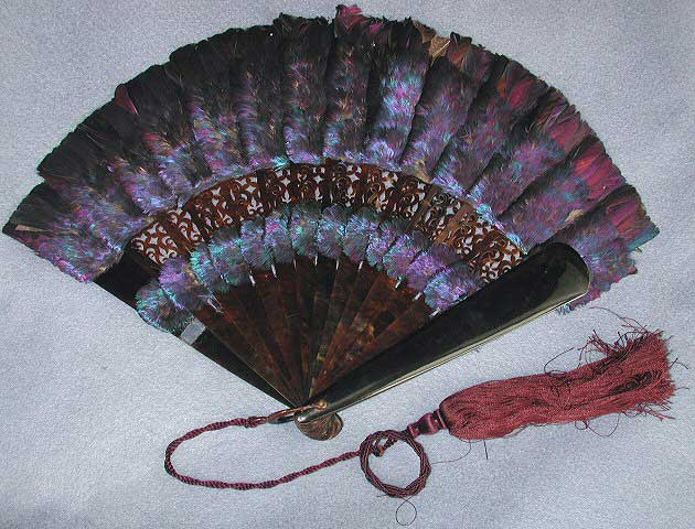 Black fan with dark brown sticks and iridescent purple, pink and teal Himalayan monal feathers.